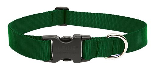 Lupine Green Adjustable Dog Collar Life In Notions